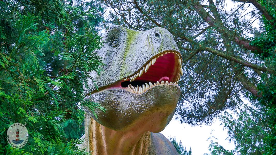 T-Rex im Freizeitpark Tolk-Schau