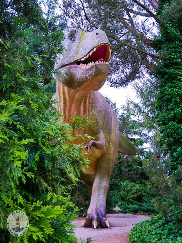 Tyrannussaurus Rex im Freizeitpark Tolk-Schau