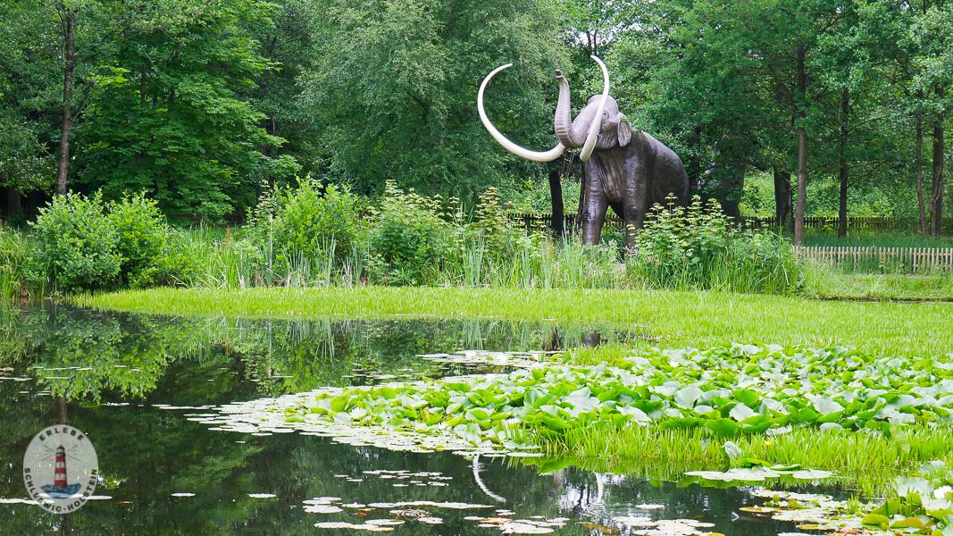 Riesentiere im Freizeitpark Tolk-Schau
