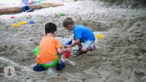 Nach Fossilien buddeln in Tolk-Schau