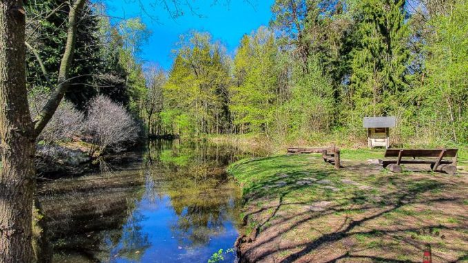Wanderweg Mönkloh Waldlehrpfad Hasselbusch Waldsee